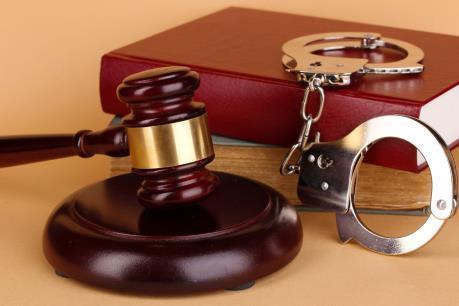 Phạm tội có tổ chức thôi quy định pháp luật Hình sự